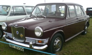 Riley Kestrel