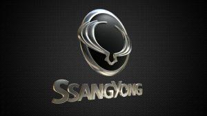 ssang_yong_logo_3d_model_c4d_max_obj_fbx_ma_lwo_3ds_3dm_stl_1793319_o